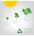 Infographics Bio Tree vector image