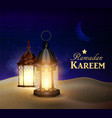 lanterns stand in the desert at night sky vector image vector image