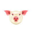 pig head isolated on white background symbol of vector image vector image
