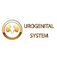 urogenital systemkidneys symbol sign stylized vector image
