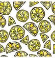 seamless lemon slices background pattern of vector image
