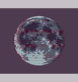 full moon of dark moon vector image