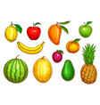 isolated icons of tropical exotic fruits vector image vector image