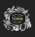 lemon tree logo template hand drawn fruit vector image vector image