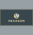 rg hexagon logo design inspiration vector image vector image