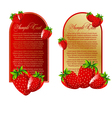 set of background with strawberry fruits vector image