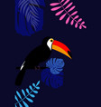 tropic toucan bird and palm leaf background design vector image vector image