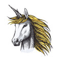 unicorn horse sketch of fairy or heraldic animal vector image vector image