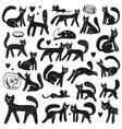 cats - doodles set vector image