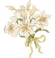 bunch lilies vector image