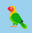 parrot green bird breed species animal nature vector image vector image
