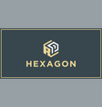 rp hexagon logo design inspiration vector image vector image