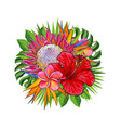 tropical flowers and green leaves in decorative vector image