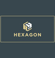 ry hexagon logo design inspiration vector image vector image
