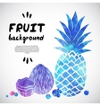 Watercolor fruit vector image