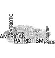 a new kind of patriotism text word cloud concept vector image vector image