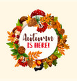 autumn frame of fallen leaf fruit mushroom vector image vector image