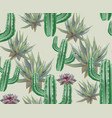cactus pattern texture modern backgrounds vector image