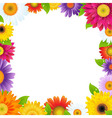 Colorful Gerbers Flower Frame vector image vector image