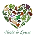 Herbs and spices icons in heart shape emblem vector image vector image