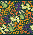 seamless pattern with meadow flowers graphics vector image vector image