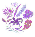 summer tropical leaves decorative set vector image