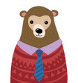 a cartoon portrait bear stylized grizzly vector image vector image