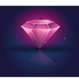 Colorful shiny bright crystals ruby diamond vector image