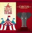 set circus banner circus ticket amazing show vector image vector image