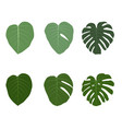 set of colorful naturalistic green leaves on vector image