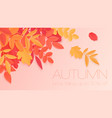 trendy autumn sale banner with paper style bright vector image vector image