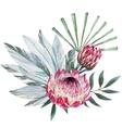 tropical protea composition vector image vector image