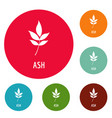 ash leaf icons circle set vector image
