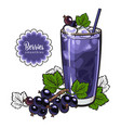 black currant smoothie - summer cool drink with vector image vector image