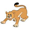 cartoon puma vector image