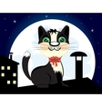 Cat on roof in the night vector image vector image