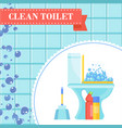 clean toilet banner vector image