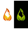 flame leaf logo template vector image vector image