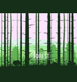 forest silhouettes trees pine fir nature vector image vector image