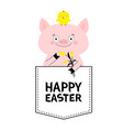 happy easter pig face head in pocket chicken vector image vector image