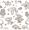 mushrooms sketch seamless pattern edible vector image vector image