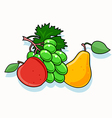 Set of fruits isolated vector image vector image