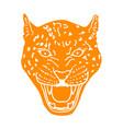 amur leopard roar face or head hand drawn leopard vector image
