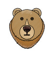 bear cartoon face vector image vector image