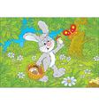 Bunny mushroomer vector image vector image