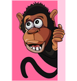 cartoon surprised monkey peeking out from behind a vector image vector image