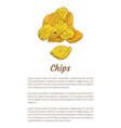 chips fried potatoes poster vector image