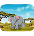 elephant in african scene vector image vector image