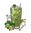 gooseberry smoothie in sketch style isolated on vector image