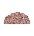 human brain idea creativity thinking memory image vector image vector image